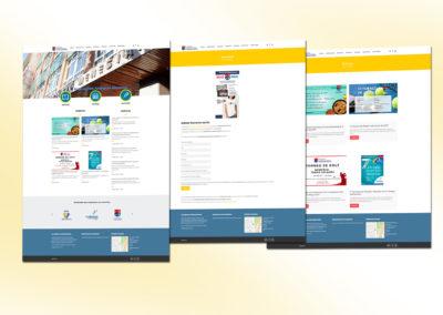 Diseño, conceptualización y programación